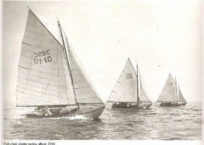 Fish Class Fleet